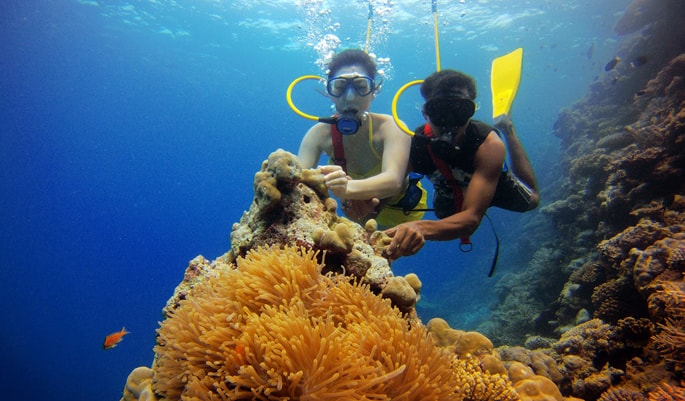 scuba diving is one of the best things to do in lakshadweep