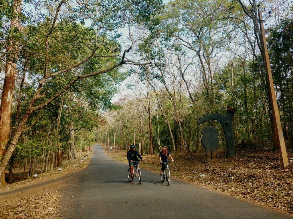 Cycling near Periyar lake