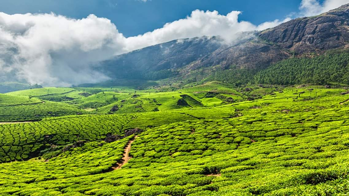 35 Exciting Places To Visit In Munnar – An Ecstatic Fairyland