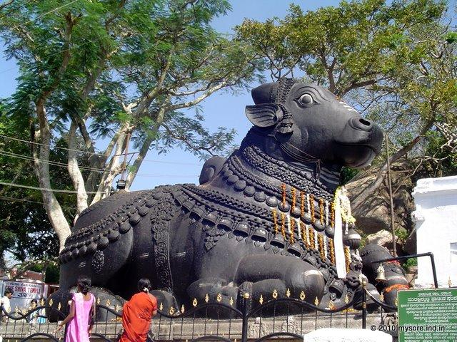 Sri Nandi Temple is among the top places to visit in Mysore