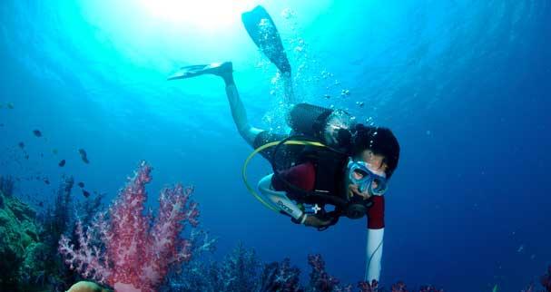 scuba diving in netrani island
