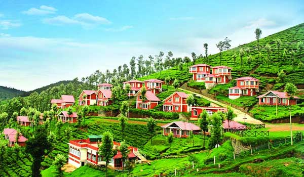 scenic view in Ooty
