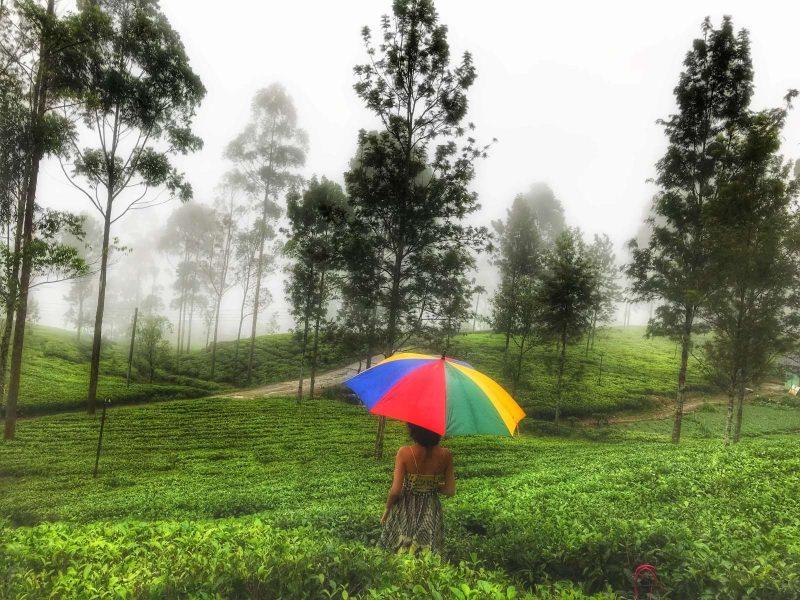 Hiking through the Nuwara Eliya